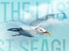 The Last Seagull